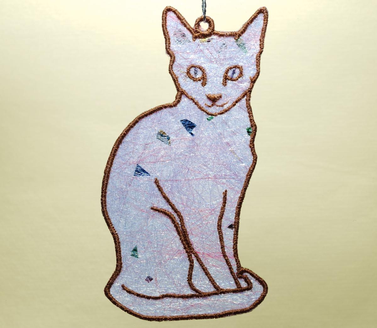 Cat 2 Shimmer